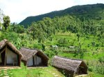 shreeban-nature-camp